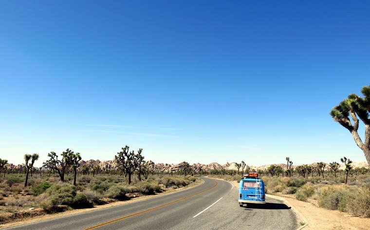Road trip: 17 dicas para uma viagem de carro inesquecível