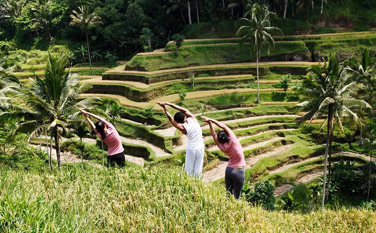 Um guia completo de viagem para Bali