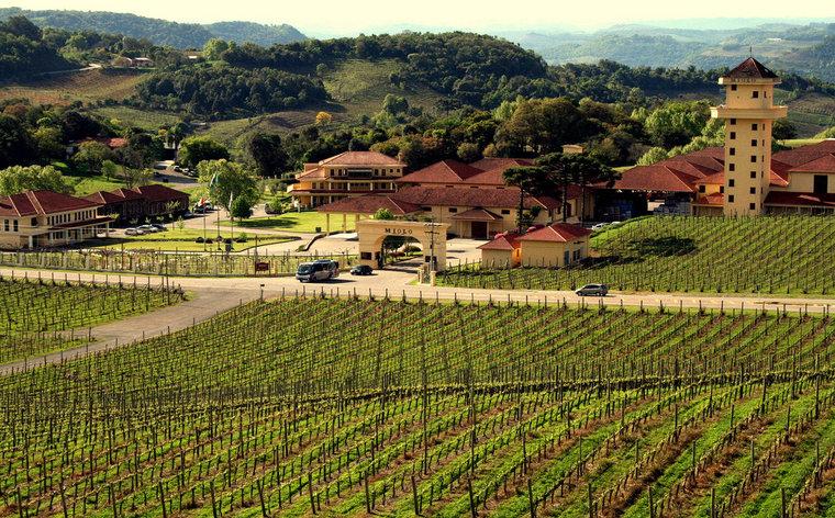 Vale dos Vinhedos: um passeio para amantes de vinho