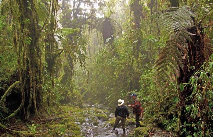 Explore a misteriosa Hacienda Bomboli ao som das histórias de Oswaldo